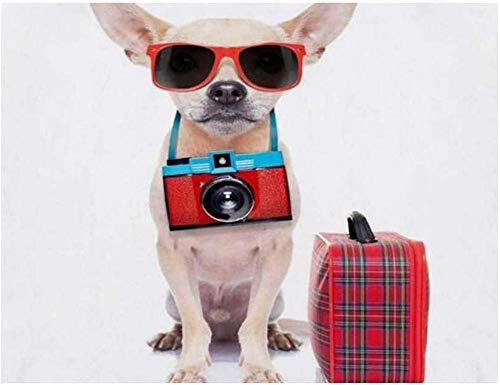 XJLAC DIY 5D diamante pintura por número, sombras Chihuahua perro cámara listo viaje equipaje, taladro completo pintura artesanía para decoración de la pared del hogar