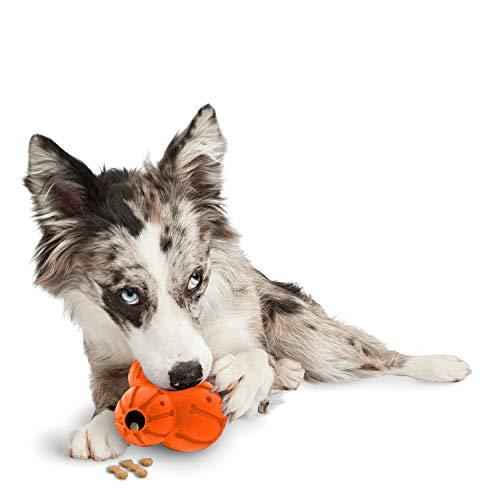 PetSafe Sportler rankenfußkrebse nachfüllbar Hund Leckerli-Spender Spielzeug, mittel