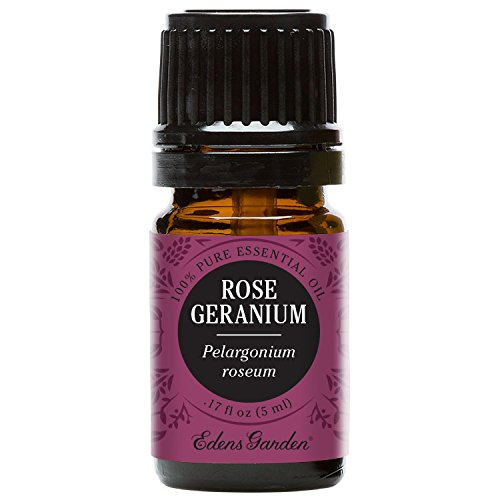 Edens Garden Rose Geranium Essential Oil, 100% Pure Therapeutic Grade (Skin Care & Stress) 5 ml
