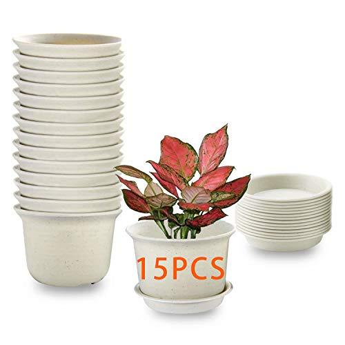 15PCS Vasi per piante da interno, vasi per fioriera in plastica da 11cm con piattino, vaso da giardino per vivaio con foro di drenaggio e vassoio per fiori, erbe, piante grasse, cactus - grigio