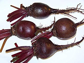 SANHOC Samen-Paket: Rote Rübe, Detroit Dunkelrot, 50 Samen