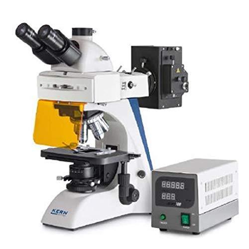 Sauter OBN 147 - Microscopio Fluorescente (Pack de 1)