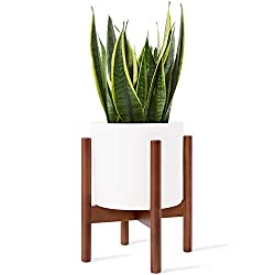 Modern cylindrical planter in wood plant stand