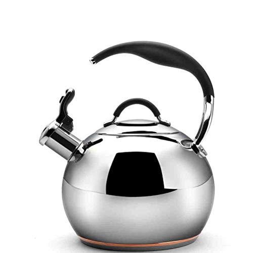 Nfudishpu Bouilloire à thé, théière à sifflet en Argent de 5 L Poignée résistante à la Chaleur en Acier Inoxydable de qualité Alimentaire adaptée à la Plupart des Surfaces de poêle