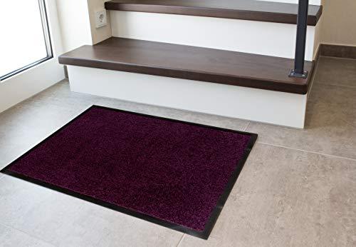Andiamo Deurmat voor binnen en buiten, vuilvangmat modern 90x150 cm lila