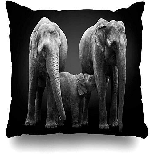 Copri cuscino 16x16 (40 x 40 cm) Proteggi gruppo asiatico Elefanti africani Mamma Mamma nutre Bambino Africa Grande vitello nero Cura federa