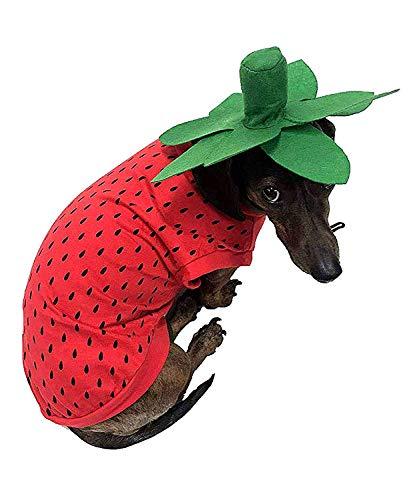 Midlee Strawberry Dog Costume (Large)