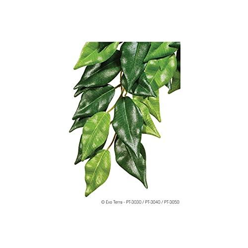 Exo Terra Regenwaldpflanze Fikus groß - 2