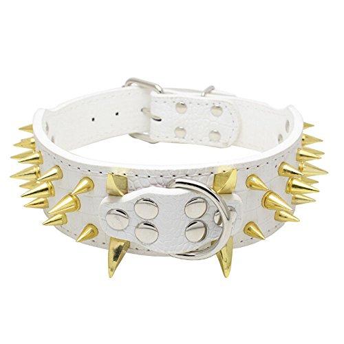 Avenpets - Collar para Perros pequeños, medianos, Grandes, bóxer, Bulldog Pitbull, Color Dorado