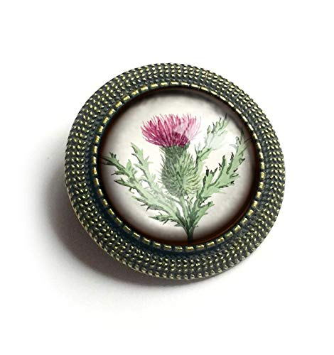 Scottish Thistle Glass and Brass Brooch