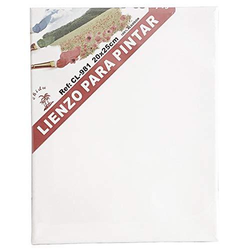 Set de 6 Lienzos 100% algodón 280g/m², Muchos Tamaños Elegir las que Necesarias,Lienzos Para Todo Tipo de Pintura Acrílico Oleo Acuarela. (20 X 25)