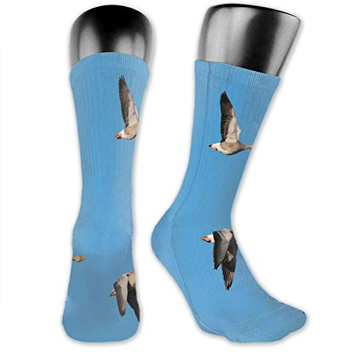 vnsukdlfg Compression Medium Calf Socks,Flock Of Migrating Greylag Geese Birds Flying In V Formation Clear Sky Picture Print
