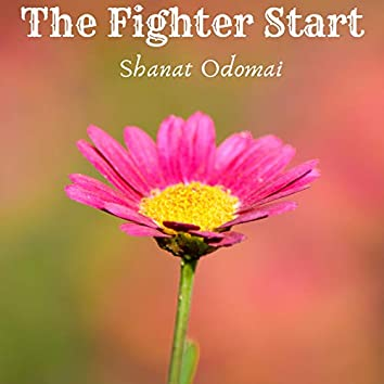 The Fighter Start