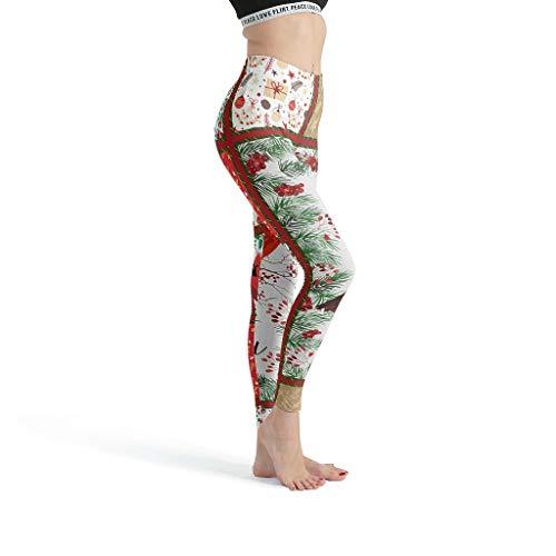 Toomjie Yoga Broek voor Vrouwen Ondoorzichtig Slim Yoga Leggings Rode Vogel Gedrukt Anti Cellulite Compressie Panty's Art Abstract