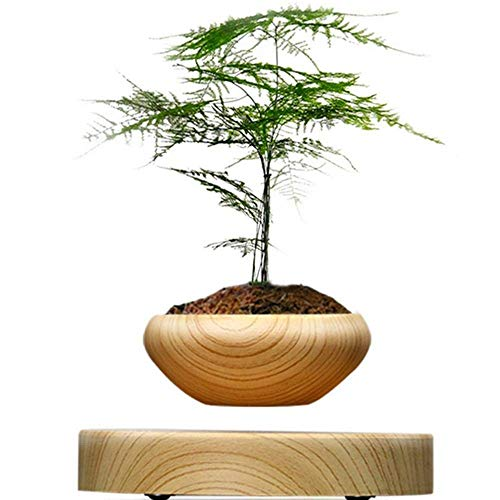 Floating Pot Plant Magnetic Suspended Round with LED Levitating Indoor for Hold 170g