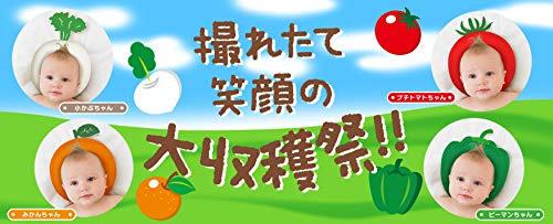ジャナ・ジャパンTelasbaby(テラスベビー)『ベビーピローフルーツ&ベジタブルズ』