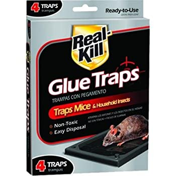 Real-Kill Mouse Glue Traps  4-Pack