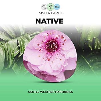 Gentle Native Weather Harmonies