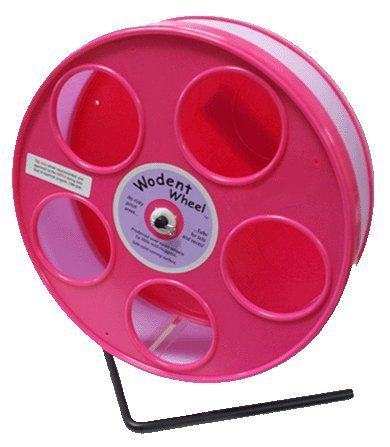"""Pink Hamster Wheel, the Wodent Wheel 'Jr.' 8"""" with Lavender Track"""