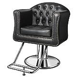 Baasha Salon Chairs for Hair Stylist, Black Salon Chairs, Hair Stylist Chairs for Salon, Salon Styling Chair, Hair Salon Equipment, Hydraulic Salon Chair