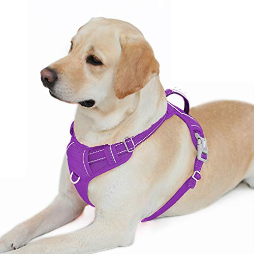 BARKBAY No Pull Dog Harness Front Clip Heavy Duty Reflective Easy Control Handle for Large Dog Walking with ID tag Pocket(Purple,L)