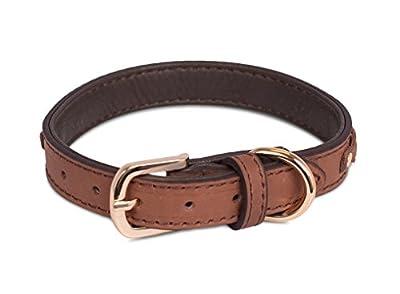 "Internet's Best Brown Leather Dog Collar with Braiding | Medium | 12 – 16 Inch (1"" Width) | Pet Accessories"