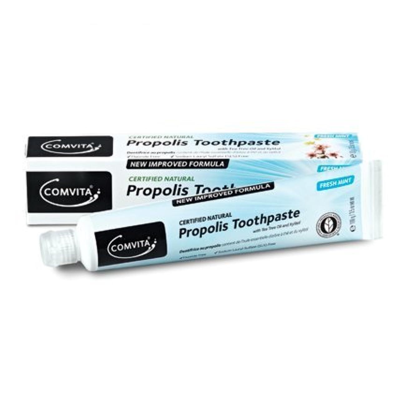 力強い縫うおいしい100% ナチュラル プロポリス 歯磨き粉 PROPOLIS TOOTHPASTE 100g [並行輸入品]