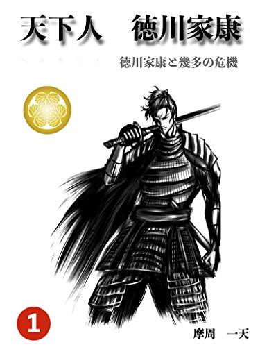 天下人 徳川家康 1: 徳川家康と幾多の危機
