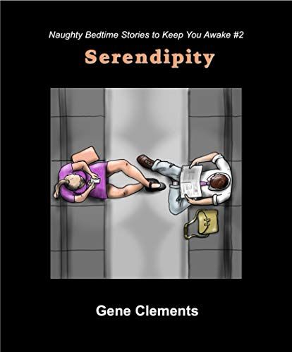 Serendipity (Naughty Bedtime Stories to Keep You Awake Book 2) (English Edition)