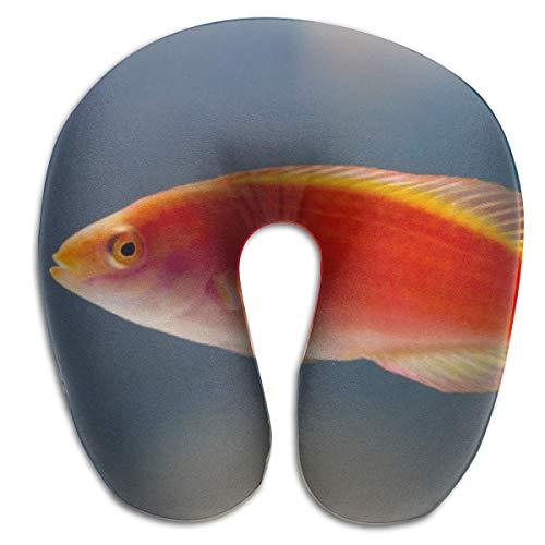Hdadwy Almohada en Forma de U, Cuello, pez Rojo, Viaje, Almohada Multifuncional, Coche, avión