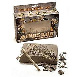 2. NW Active Kids Large Dinosaur Excavation Kit