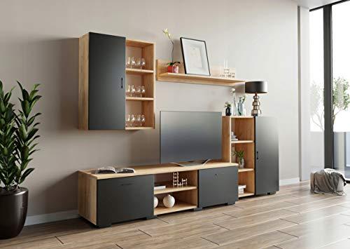 MATKAM Wohnwand Dedal, Schrankwand Wohnzimmer Modern, Wohnzimmerschrank mit Fernsehtisch Komplett Möbel (Artisan Eiche-Schwarz)
