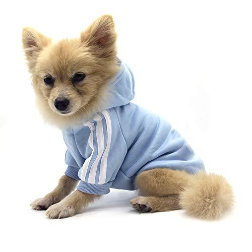 QiCheng&LYS Dog Hoodie Ropa, Mascota Cachorro Gato algodón Lindo cálido Sudadera con Capucha suéter (S, Azul)