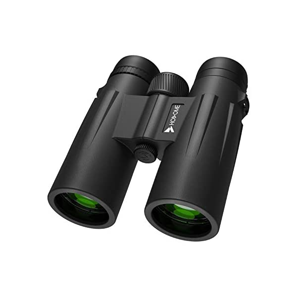 Hosome 12x42 Binoculars for Adults, Compact HD Binoculars for Bird Watching Travel Stargazing Hunting Concerts Sports with Clear Weak Light Vision, BAK4 Prism FMC Lens with Strap Carrying Bag (12x42)