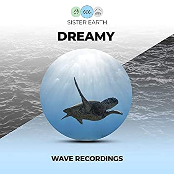 Dreamy Wave Recordings