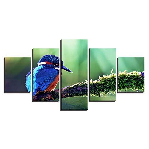 Canvas schilderij HD druk Home Decoration 5 stuks vogel dier muurkunst modulaire foto's kinderbed achtergrond kunstwerk poster (geen frame) 20x35 20x45 20x55cm