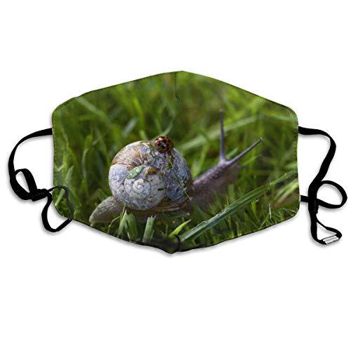 Slak met een stofdicht wasbaar lieveheersbeestmasker met zeven vlekken, herbruikbaar masker, mondmaskers