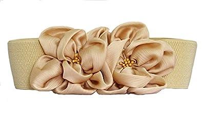 BAIMIL Women's Chiffon Flower Decorative Belt Elastic Wild Belt Buckle Belt