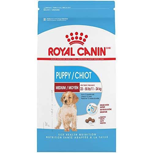 Royal Canin Medium Puppy Dry Dog Food, 6 pounds.