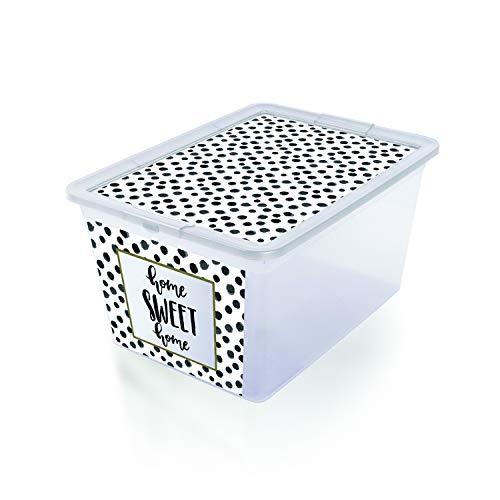 BranQ X Box Deco Aufbewechrungbox mit Deckel Organizer Decobox Behälter (30L Punkte)