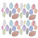 HEALLILY hojas de esqueleto natural hojas secas tarjetas de felicitación marcador materiales diy para decoración de adornos 40 piezas (colores mezclados)