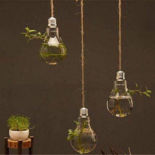NewDreamWorld Vasetti da appendere a forma di lampadina in vetro, per piante d'aria, piante grasse, piante acquatica, 3 pezzi