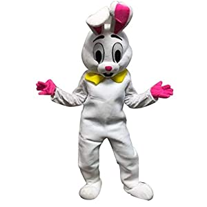 Costume Included : bunny head . body suit . gloves Intended Use : Easter Day . Halloween Day . Birthday Field of vision: eyes Size : suit people under 6'2'' weight under 200LBS Material : Sponge . polyester