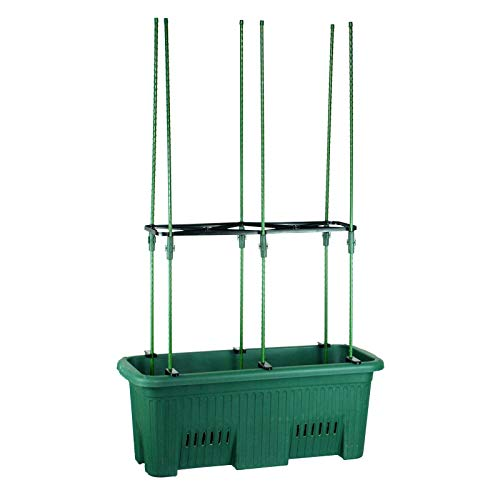 Dark Green Climbing Plants Grow Kit, Single Set - Trough Pot & Trellis Stakes - 70cm (L) x 30cm (W) x 27cm (H)