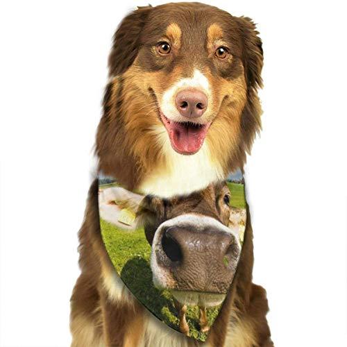 FunnyStar hond Bandana behang bureaublad koe sjaals accessoires decoratie voor huisdier katten en puppies