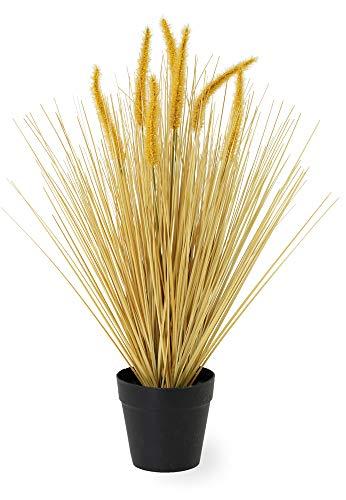 Boston International Decorative Grass Potted Plant, Golden Dogtail