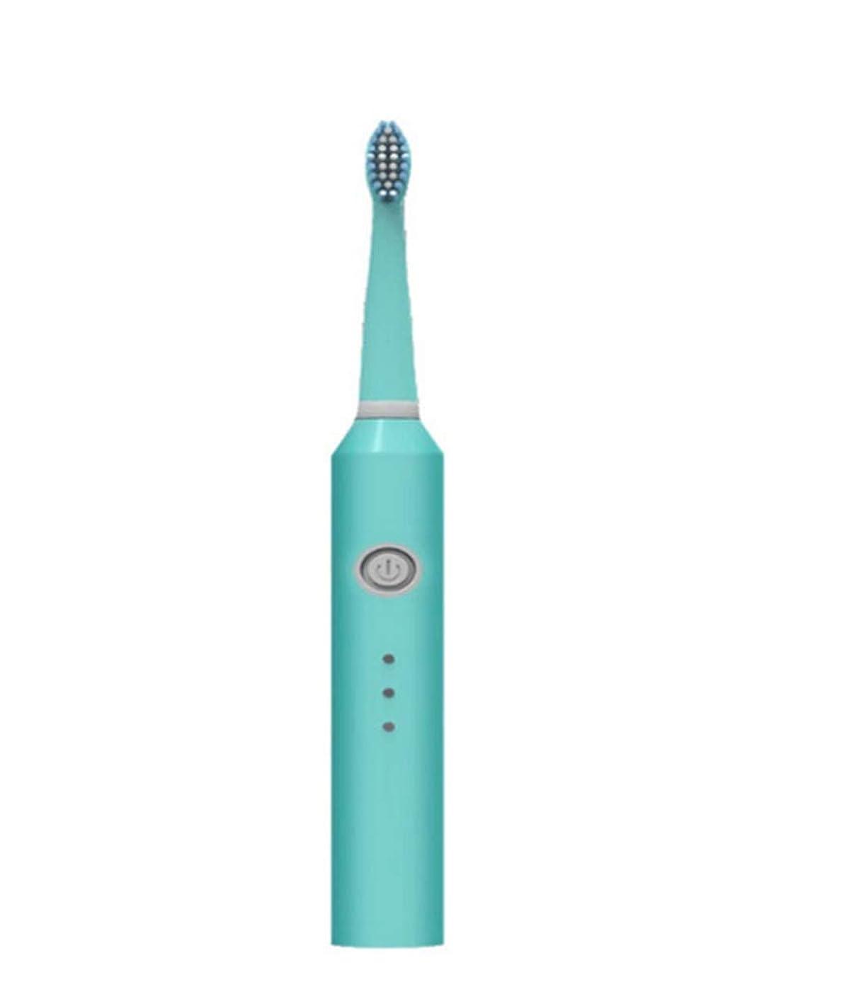音波振動電動歯ブラシ6モードusb充電式スマートタイマーipx7防水2ブラシヘッド用大人