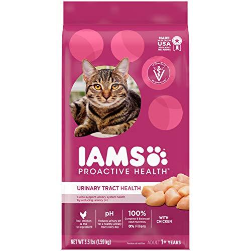 Image of IAMS PROACTIVE HEALTH Adult...: Bestviewsreviews