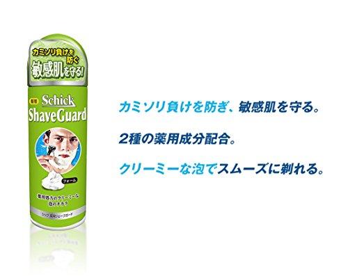シックSCHICK薬用シェーブガードFライム単品200G