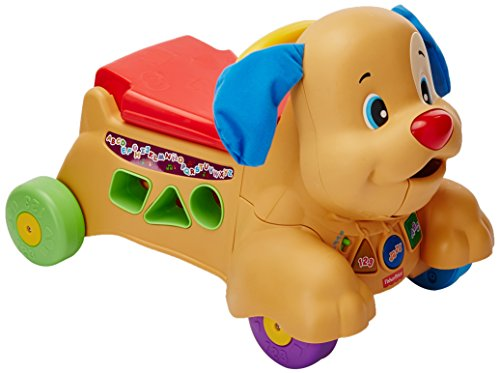 Fisher Price Fisher Price Ríe y Aprende Perrito Camina Conmigo Baby Toy